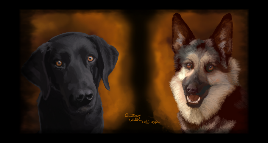 Kazzi and Felicia - Seeing Eye Dogs by WindSeeker