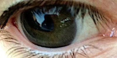 Eye by WindSeeker