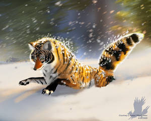 Snow Driven - DTIYS