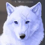 WindSeeker - Myth RP