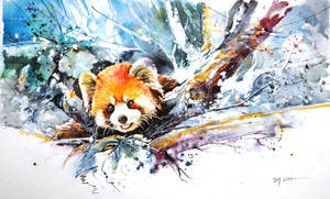 Speed Painting - Red Panda