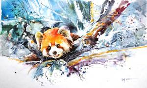 Speed Painting - Red Panda