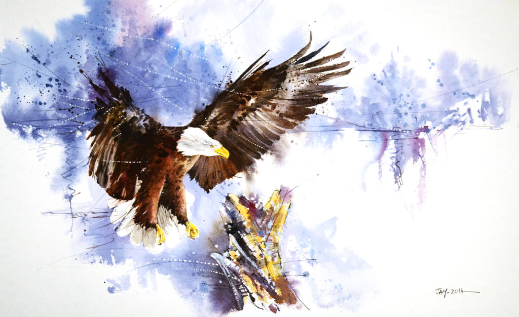 Speed painting - Bald Eagle