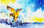 Speed Painting - Kingfisher