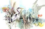 Heron - Watercolor Painting