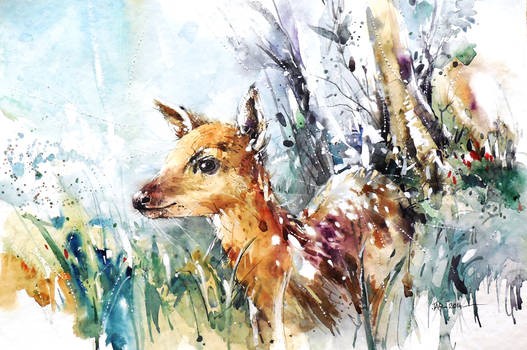Wildlife Watercolor - Baby Deer