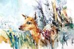 Wildlife Watercolor - Baby Deer