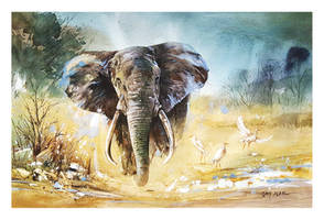 Watercolor Painting - Elephant