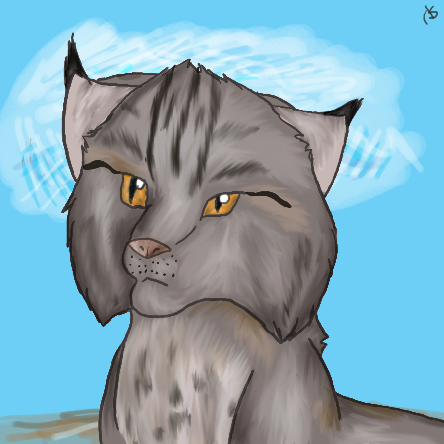 http://fc04.deviantart.net/fs71/f/2011/084/a/5/lynx_by_shemha-d3cere7.png