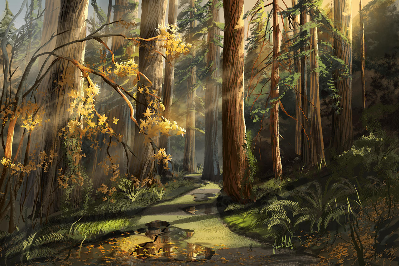 The Forest of Nisene Marks by chateaugrief