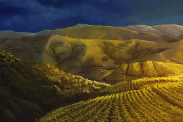 Paso Robles by chateaugrief