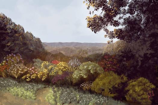 Mt. Diabolo Flowers
