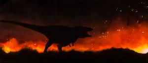 The Burning Kingdom