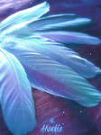 Holographic Feathers