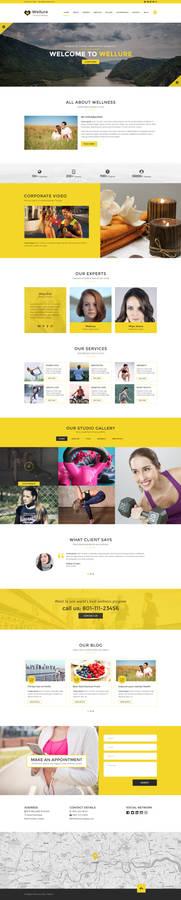 Wellure - PSD Website Template