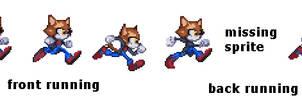Eddie the cat running