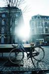 Bikes everywhere 01