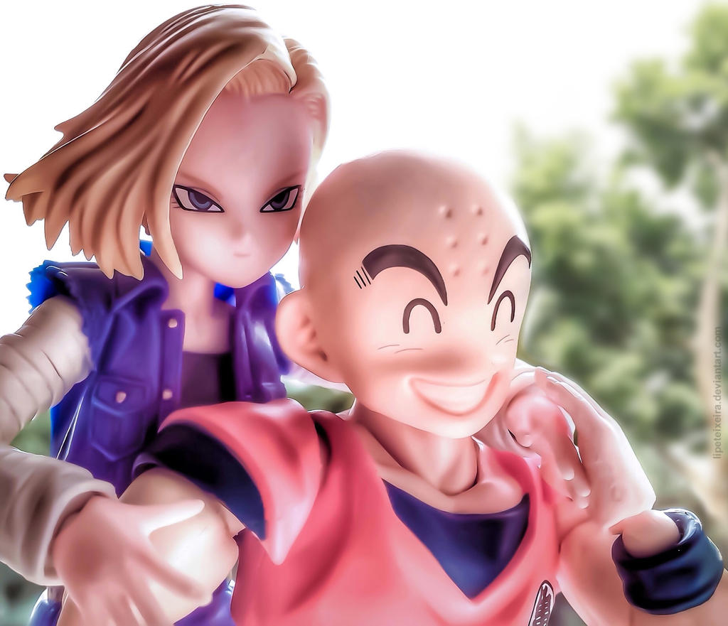 Android 18 And Tail Deviantart: Kuririn And Android 18 / 2.0 By