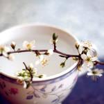 plum tea II