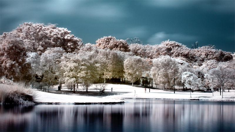 iNfraRed - bOtanical gardens 2 by shin-ex