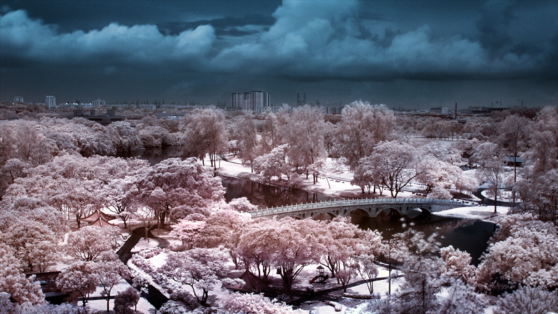 iNfraRed - Chinese Gardens 4 by shin-ex