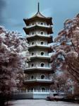 iNfraRed - Chinese Gardens 1