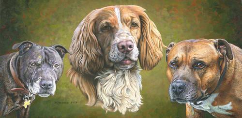 Triple Dog Portrait by NewAgeTraveller