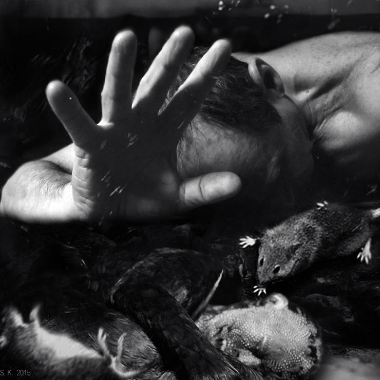 Untitled000 by StepanKuc