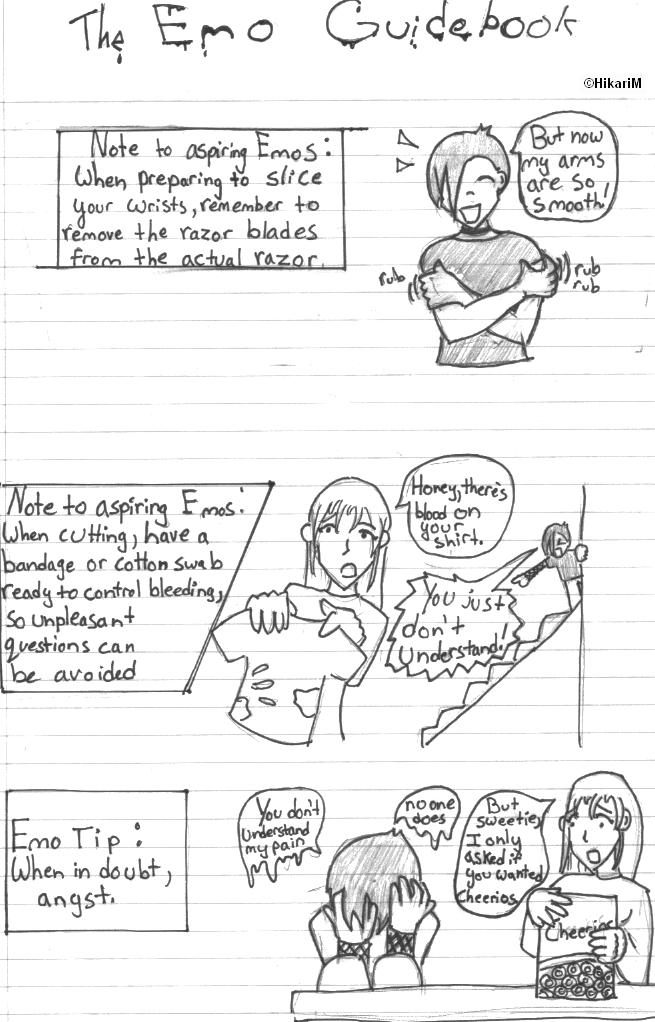 The Emo Guidebook by HikariM