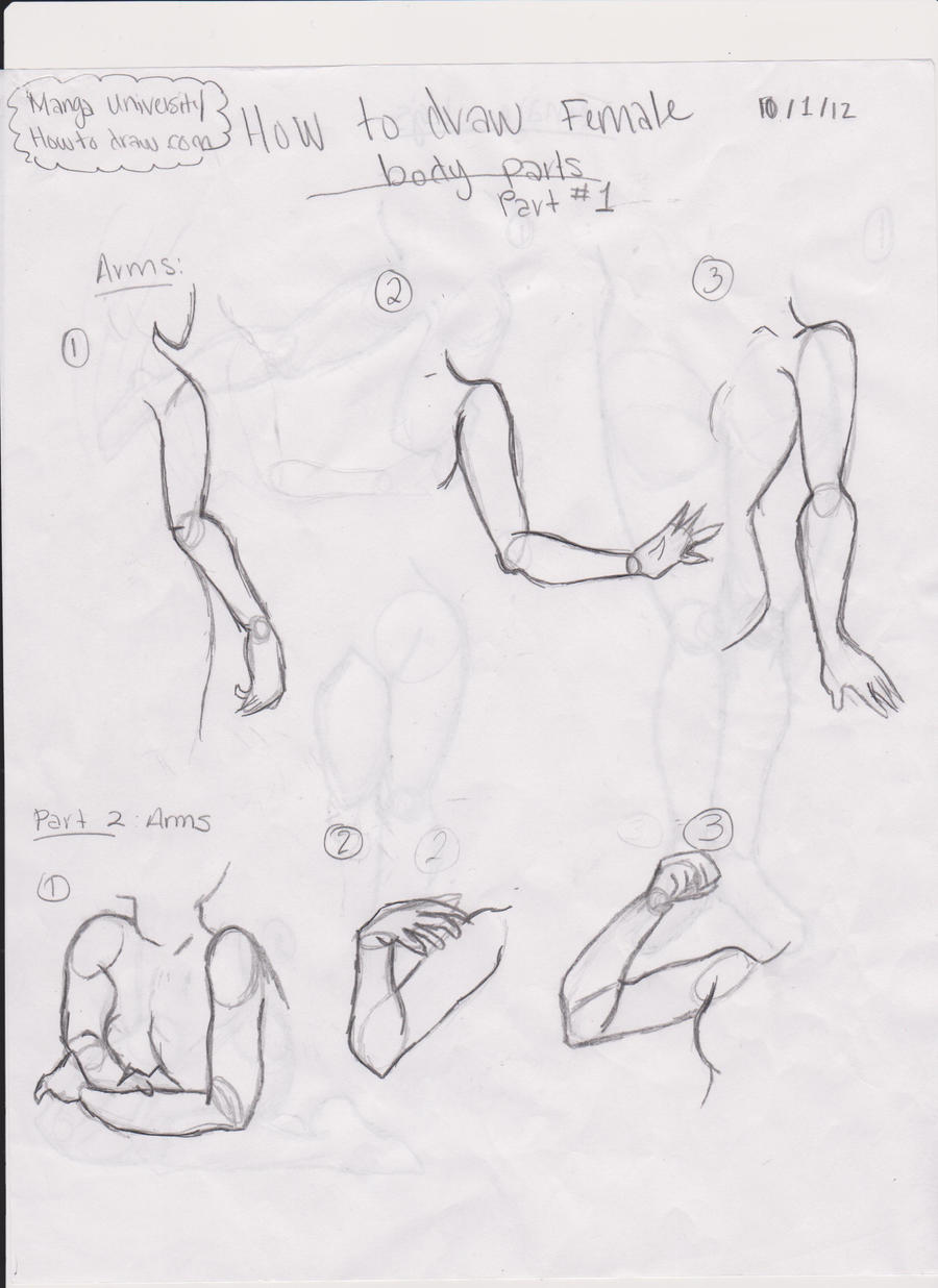 How TO Draw Part 2 by Dimitra012