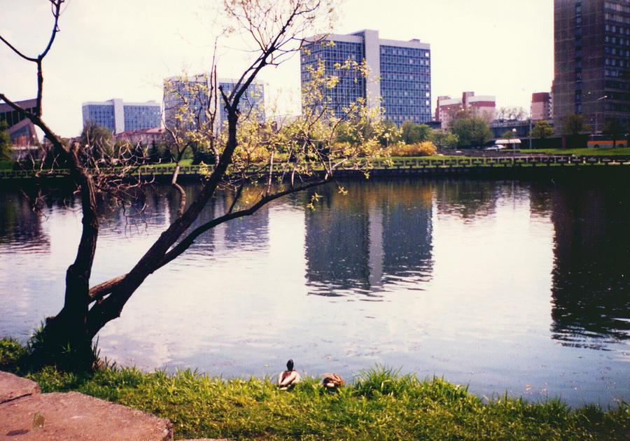 City  views by tkuat