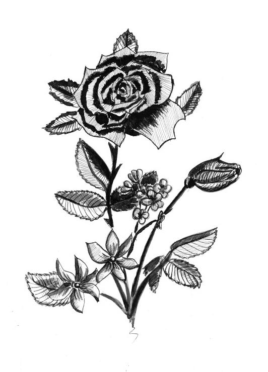 flowers by tkuat