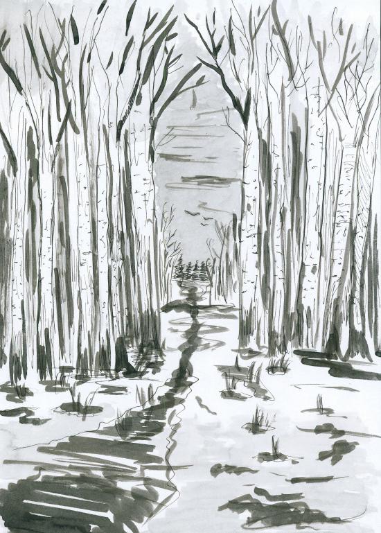 birchwood by tkuat
