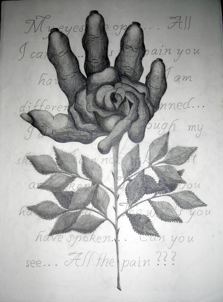 The Torn Rose.2