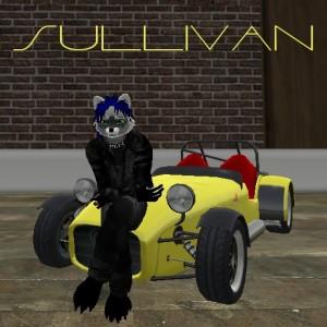 Sullivanyifu's Profile Picture