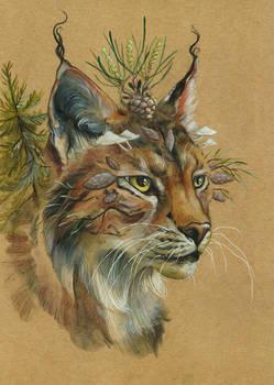 Traditional lynx