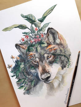 Traditional wolf ''The guardian''
