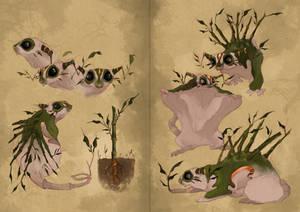 Arashiyama creature scientific creature