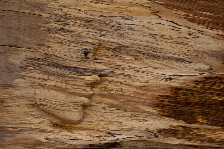 DUBOREZI Untitled__relief___wood_by_ayhantomak