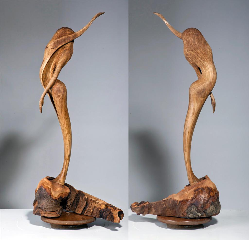 Veathercock, 2012 by ayhantomak
