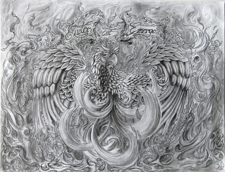 Rises Drawing Phoenix Rising Drawings