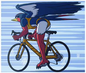 SWELLOW : Cyclist with elegant wings