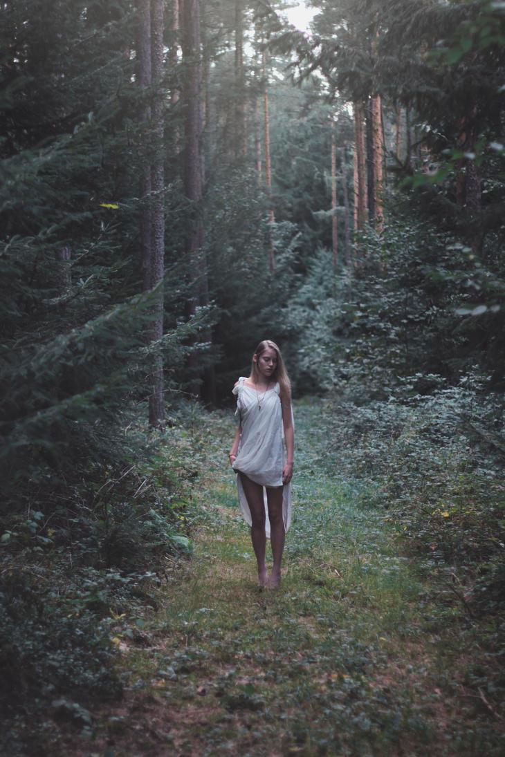elves path III by naatan