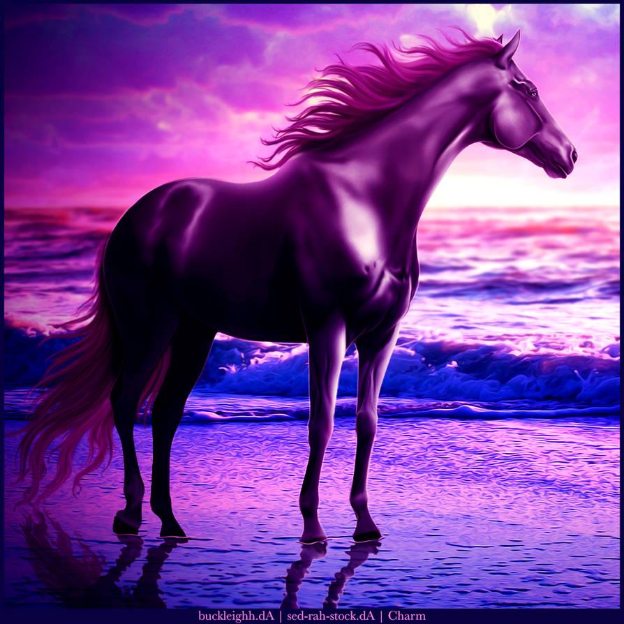Purple Ocean Premade