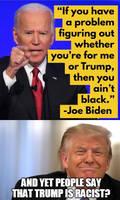 Biden Is The Racist Not Donald Trump