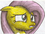 Fluttershy Looks To The Right Colored
