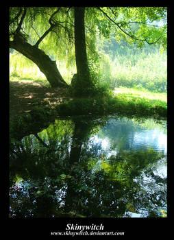 Reflexion....World Behind III