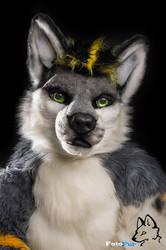 Fursuit Portrait - Sorin Omega by FotoFurNL