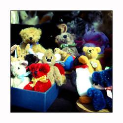 Teddy Bears 3
