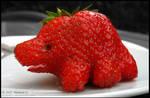 Strawberry or Dinosaur